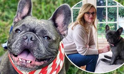 Reese Witherspoon says goodbye to her beloved French Bulldog Pepper after she died during the night