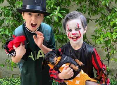 Too cute to spook! Irish celebs show off their children's fang-tastic Halloween costumes